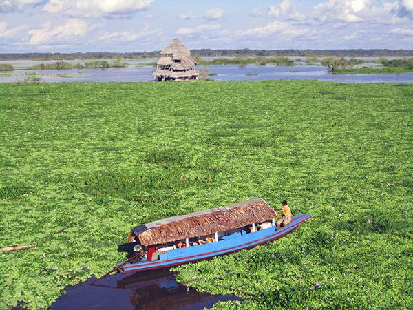 Amazon_boat