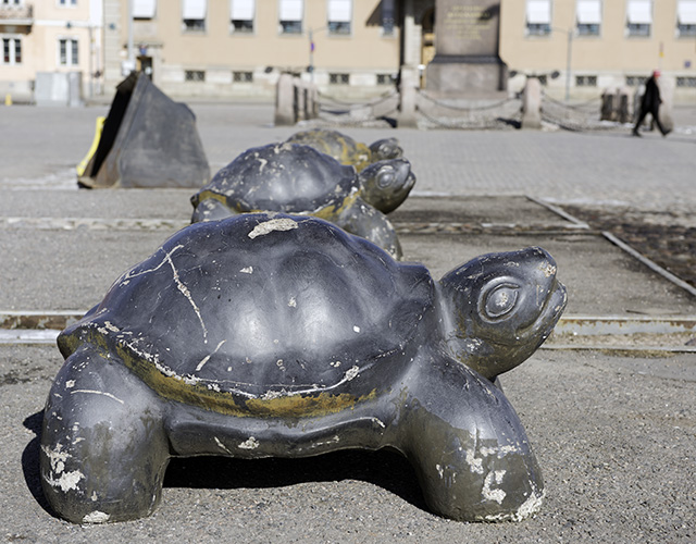 Helsinki_Turtle